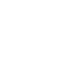 Sofy SPORTS  260 Without Wings 24